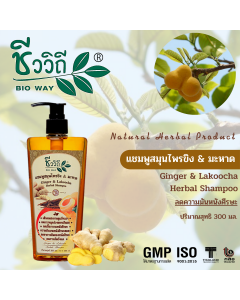 Bio Way Ginger & Lakoocha Herbal Shampoo (300 ml)