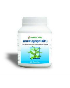 Herbal One Compound Phyllanthus Urinaria Capsule (100 pcs)